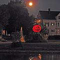 Happy Pumpkin At The Pond by Barbara McDevitt