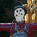 Happy Scarecrow by Denyse Duhaime