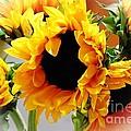 Happy Sunflowers by Angela J Wright