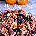 Happy Thanksgiving by Barbara Griffin