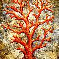 Happy Thru Coral by Kaata    Mrachek