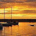 Harbor Sunset by AJ  Schibig