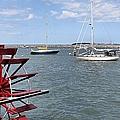 Harbor View by Janice Drew