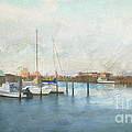 Harbor Morning by Terry Rowe