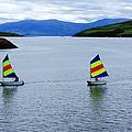 Harbour Sailing by Aidan Moran