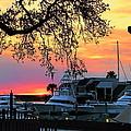 Harbour Town Sundown by Dale Kauzlaric