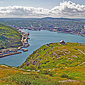 Harbour View From Signal Hill National Historic Site In Saint John's-nl by Ruth Hager