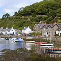 Harbourside by Doug Wilton