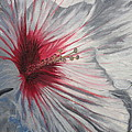 Hardy Hibiscus by Sherri Anderson
