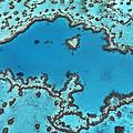 Hardy Reef On Great Barrier Reef by Ingo Arndt