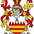 Hare Coat Of Arms Irish by Heraldry