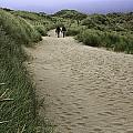 Harlech Dunes by Fran Gallogly