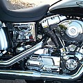 Harley Black And Silver Sideview by Anita Burgermeister