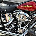 Harley Chrome by Laura Fasulo