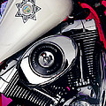 Harley Cop 2 by Gary Gingrich Galleries