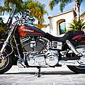 Harley Davidson - Fat Bob