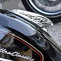Harley Davidson Motorcycle American Eagle Fender Ornament Usa by Sally Rockefeller