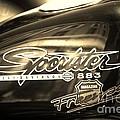 Harley Davidson Sportster 883 by Stefano Senise