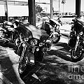 Harley Davidson Touring Motorbikes Including Electra Glide Outside Dealership In Orlando Florida Usa by Joe Fox