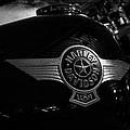 Harley Davidson Usa by Jeff Swanson