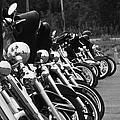 Harleys All In A Row by Jim Lepard