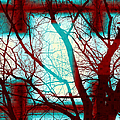 Harmonious Colors - Red White Turquoise by Shawna Rowe