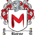 Harne Coat Of Arms Irish by Heraldry