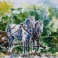 Harnessed Horses by Zaira Dzhaubaeva