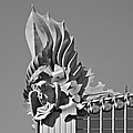 Harold Washington Library Chicago by Christine Till