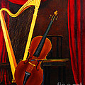 Harp And Cello by D L Gerring