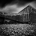 Harpa by Ian Good