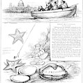 Harper's Weekly, 1881 by Granger