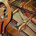 Harpsichord  by Joan Reese
