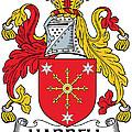 Harrell Coat Of Arms Irish by Heraldry