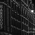 Harrods Lights At Night by Clare Bambers