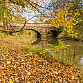 Hartford Bridge In Autumn by David Head