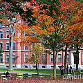 Harvard Yard Fall Colors by Jannis Werner