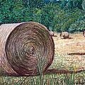 Harvest 1 by Brenda Stevens Fanning