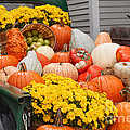 Harvest Display At The Vermont Country Store by Charles Kozierok