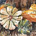 Harvest Gourds by Claudia Hafner