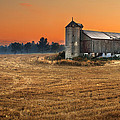 Harvest Morning by Garvin Hunter