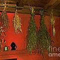 Harvest Of Herbs by RC DeWinter