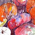 Harvest Pumpkins by Claudia Hafner