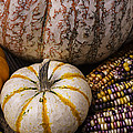 Harvest Still Life by Garry Gay