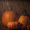 Harvest Still Life by Wayne Meyer