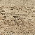Harvest  The Plain Of La Crau by Vincent van Gogh