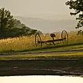 Harvest Time by Douglas Barnett