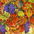 Harvest Time by Karen Wright