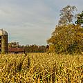 Harvest Time by Paul Freidlund