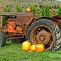 Harvest Tractor by Randy Harris